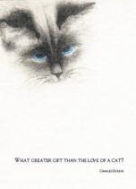 Love of a Cat