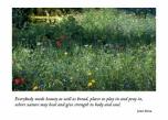 Heron & Flowers